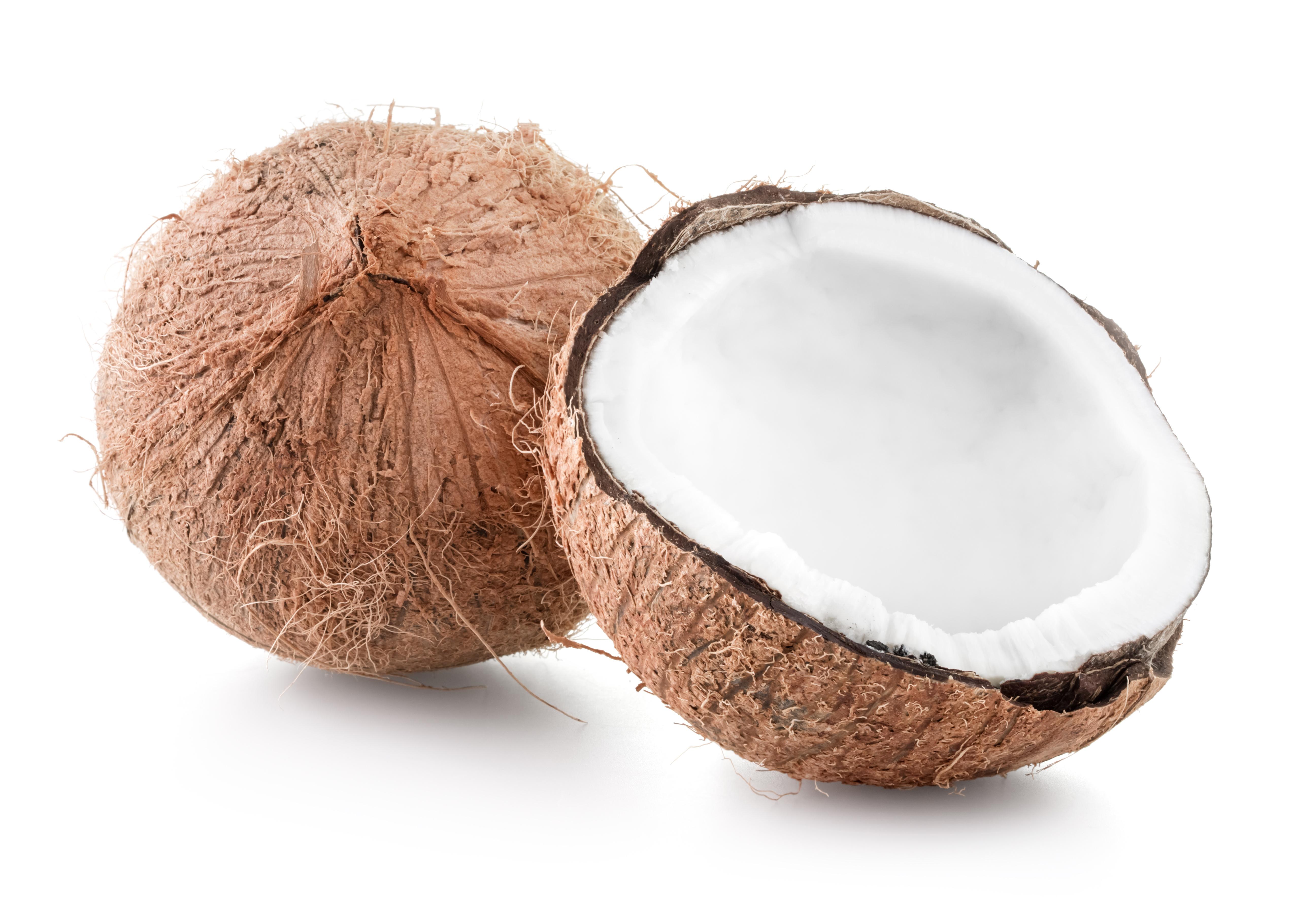 Coconut Flavour Kulfi